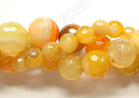 Yellow Botswana Agate  -  Faceted Round  15""