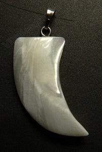 White Shell Pendant w/ Silver Bail - Horn