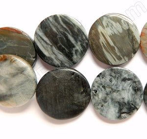 Eagle Eye Jasper -  Puff Coins 16""