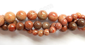 Red FossilCoral Jasper  -  Smooth Round Beads  16""