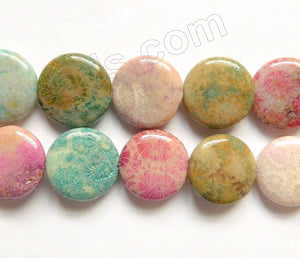 Mixed Color Fossil Coral  -  Puff Coins  16""