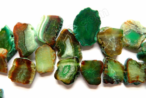 Dark Green Brown Fire Agate w/ Black  -  Top Drilled Irregular Flat Slabs 8""