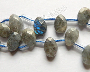 Labradorite Natural  -  Faceted Flat Briolette