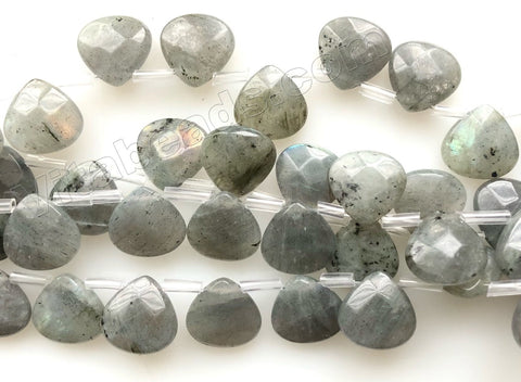 Light Labradorite Natural  -  Faceted Flat Briolette   8""