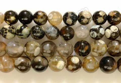 Turtle Fire Agate  -  Smooth Round Beads  16""