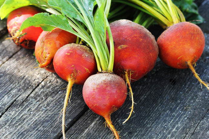 How to Grow Golden Beets Outside