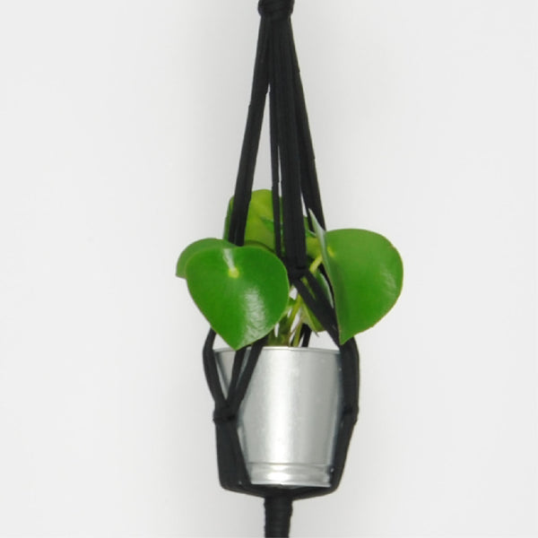 THE 'MINI-PRIM' PLANT HANGER //black//