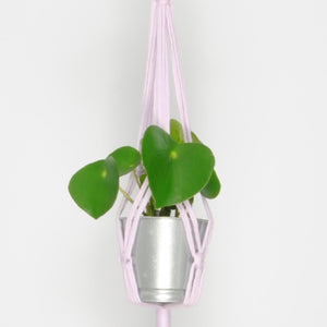 THE 'MINI-PRIM' PLANT HANGER //lilac//