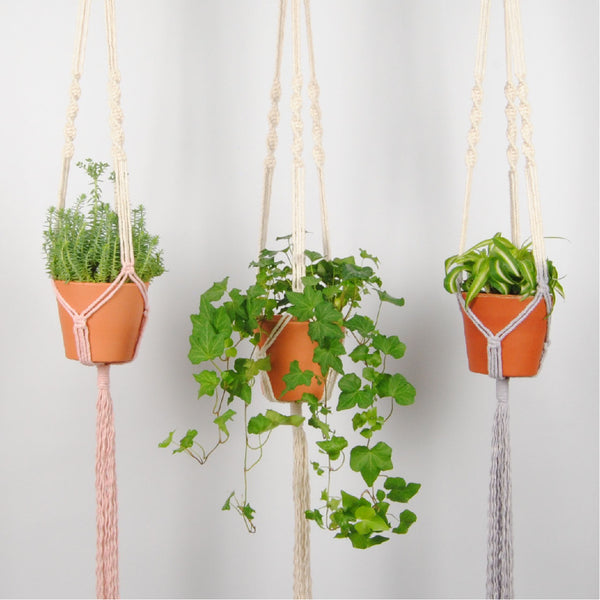 THE 'HELIX' PLANT HANGER //blush//