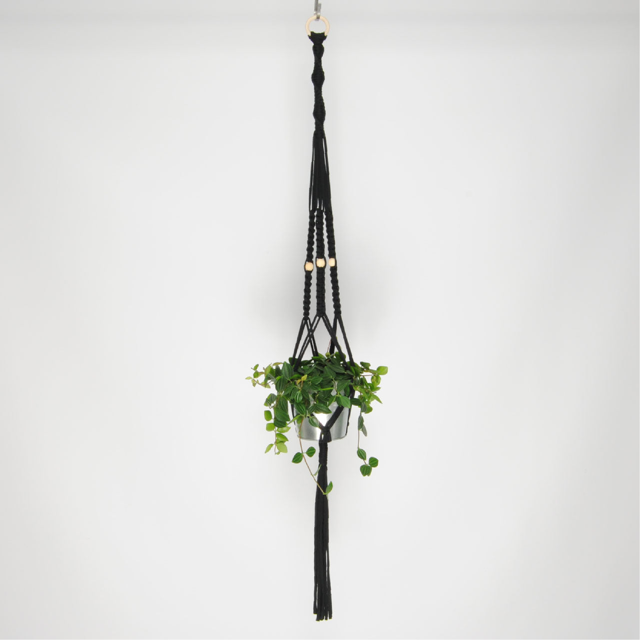 THE 'PRIMULA' PLANT HANGER //black//