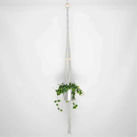 THE 'PRIMULA' PLANT HANGER //grey//