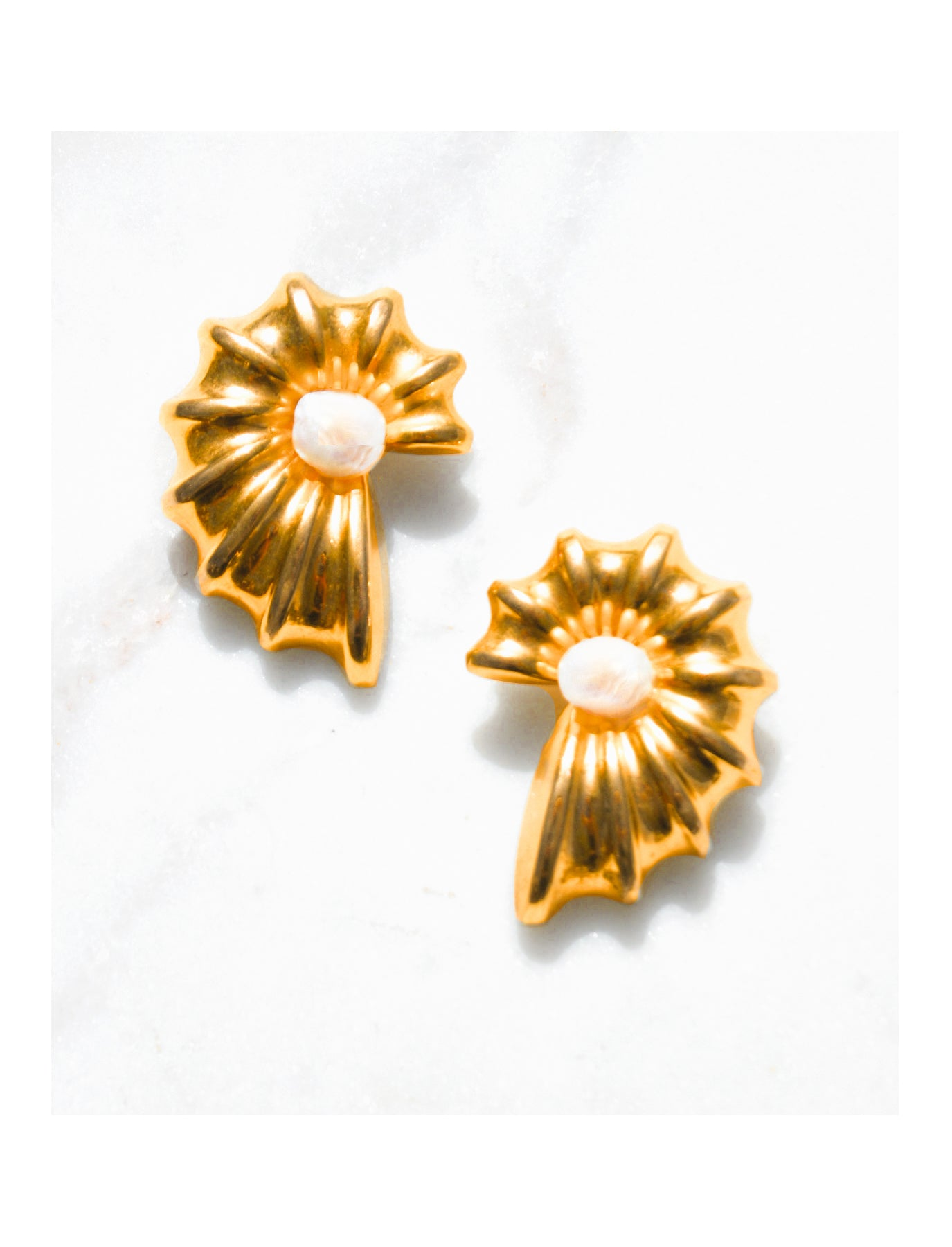Brass Nautilus Shell Earrings