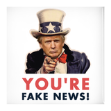 You're Fake News Button