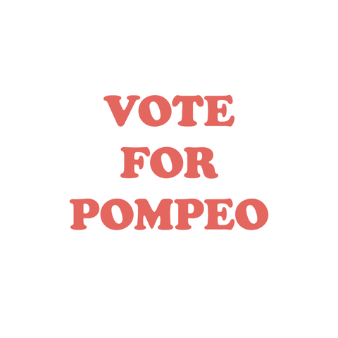 Vote For Pompeo Die Cut Stickers