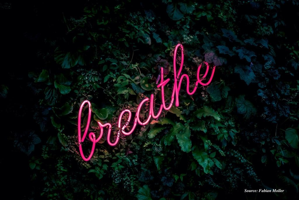 Breathe neon lights with leaves