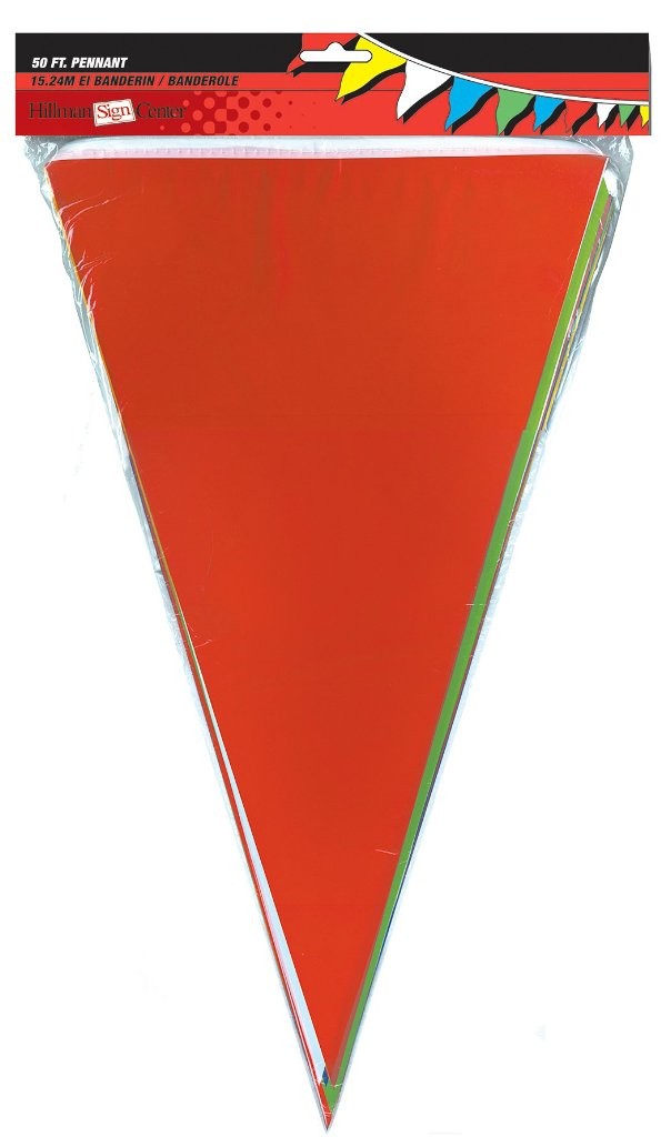 Multicolor Pennant Flags 50' String