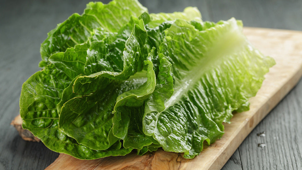 Romaine Lettuce 10 oz - Prechecked