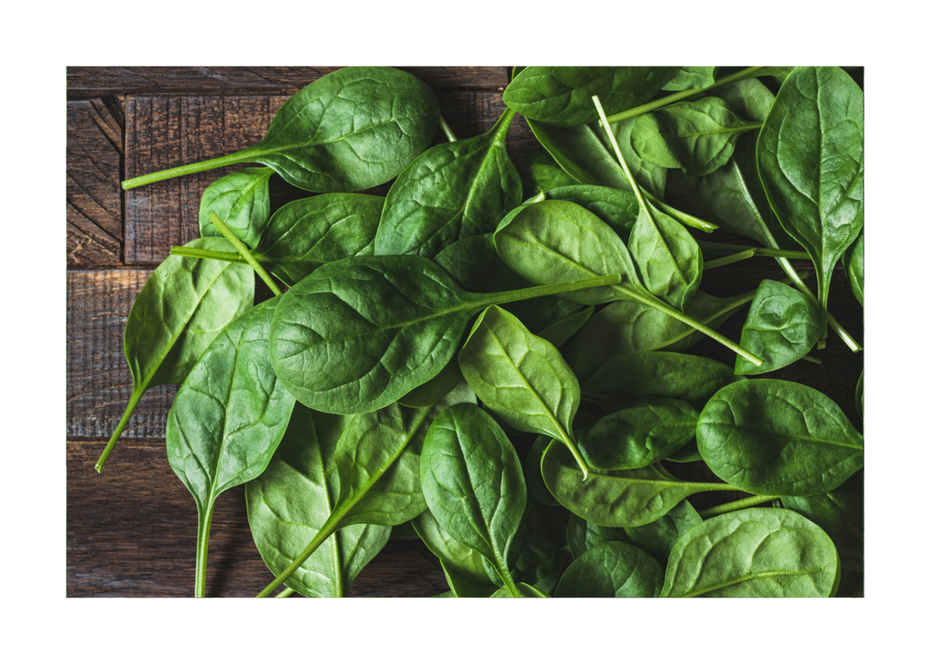 Spinach 10 oz - Prechecked