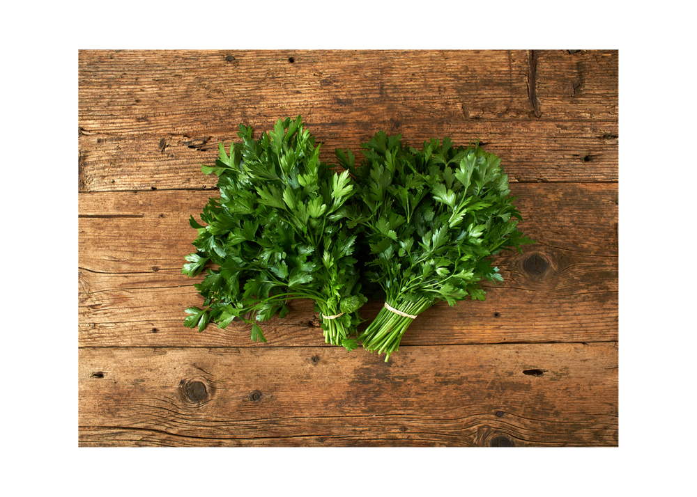Italian Parsley - Kosher Certified