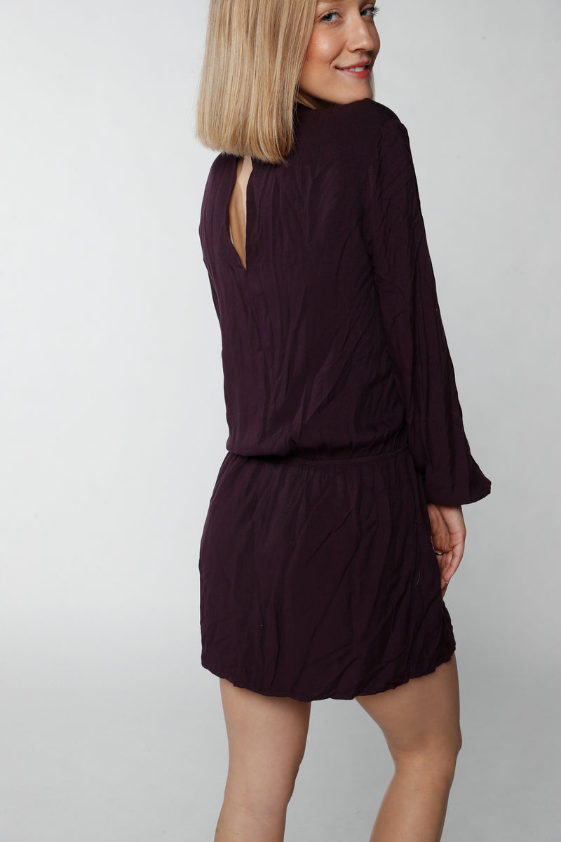 Plum V-Neck Dress