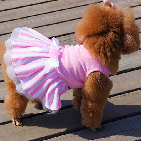Puppy's Party Dress