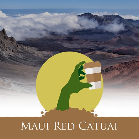 Coffee - Maui Red Catuai Coffee