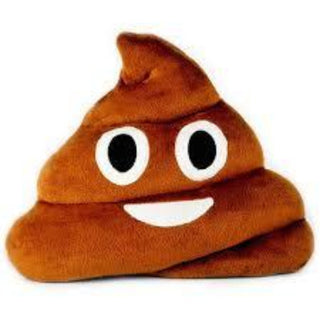 ogo poop emoji cushion