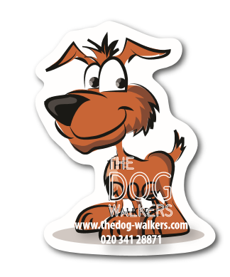 Dog Fridge Magnet 67MM x 87MM