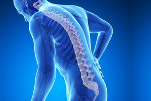 Natural Osteoporosis Therapy