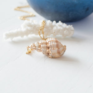 Shell Necklace Juju Treasures