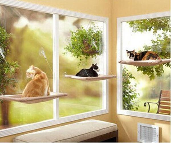 Window Cat Bed - Bow Chicka Meow Meow