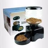 Automatic Cat Feeder - Bow Chicka Meow Meow