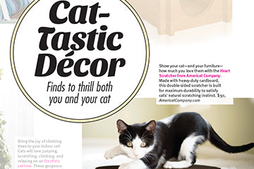 Featured in Modern Cat Magazine: Cat-Tastic Decor