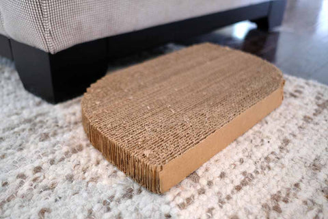 Cat scratching pad next to couch