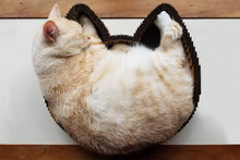 Load image into Gallery viewer, Orange cat sleeping in Americat cat scratcher bed