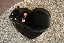 Load image into Gallery viewer, Black cat sitting on heart shaped Americat scratching pad