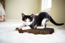 Load image into Gallery viewer, Black and white cat scratching scratching pad