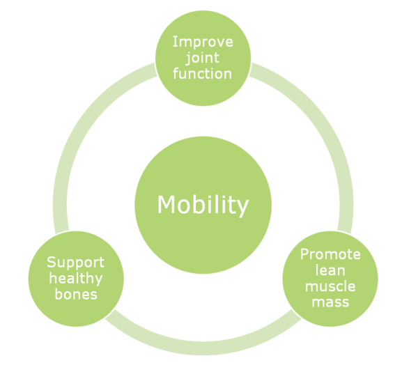 Protein Essentials Mobility Circle