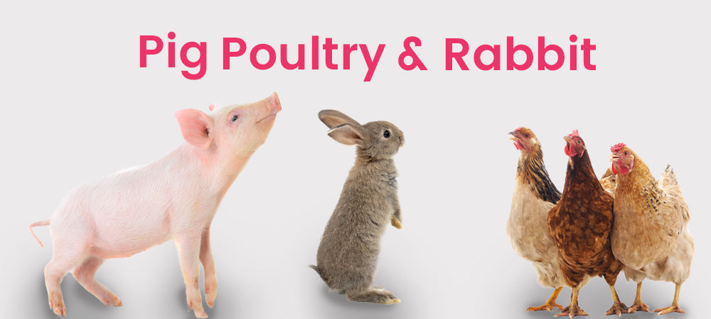 Pig, poultry and rabbit category