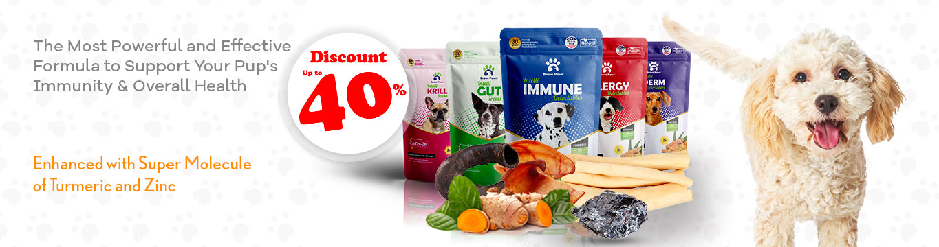 Supplements and Healthy Treats for Dogs