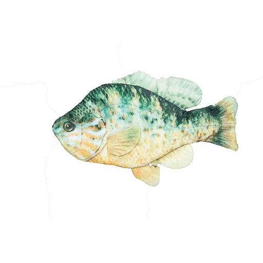 Freshwater Fish Sunfish with Rope