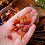 Carnelian Tumbled Chips