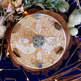 Prosperity & Abundance Tree Of Life Crystal Grid Set