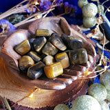 Tigers Eye Tumbles - Small