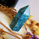 Apatite Polished Point #8