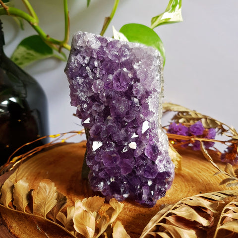 Amethyst Cluster - Standing - #2