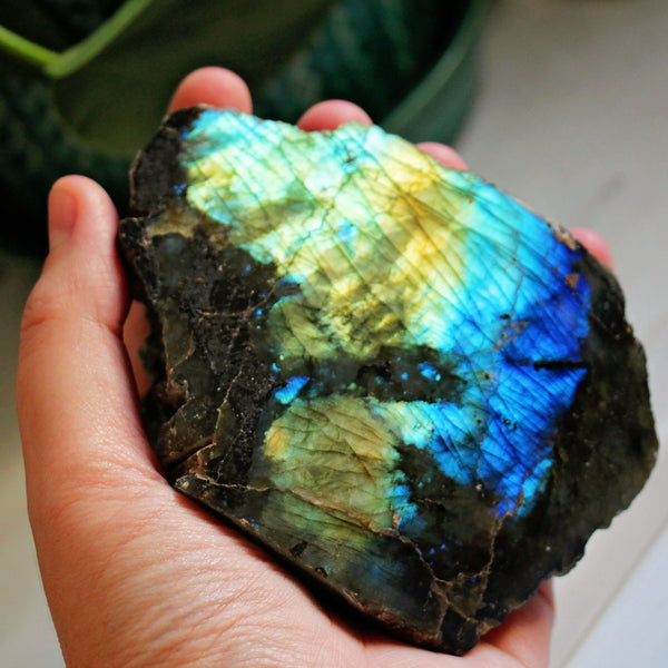 Labradorite Standing Polished Face