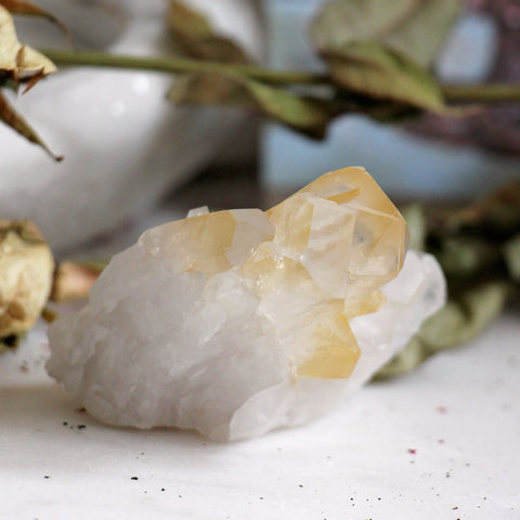 Golden Healer Quartz Cluster - 1