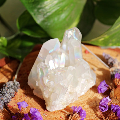 Angel Aura Quartz Cluster - #1