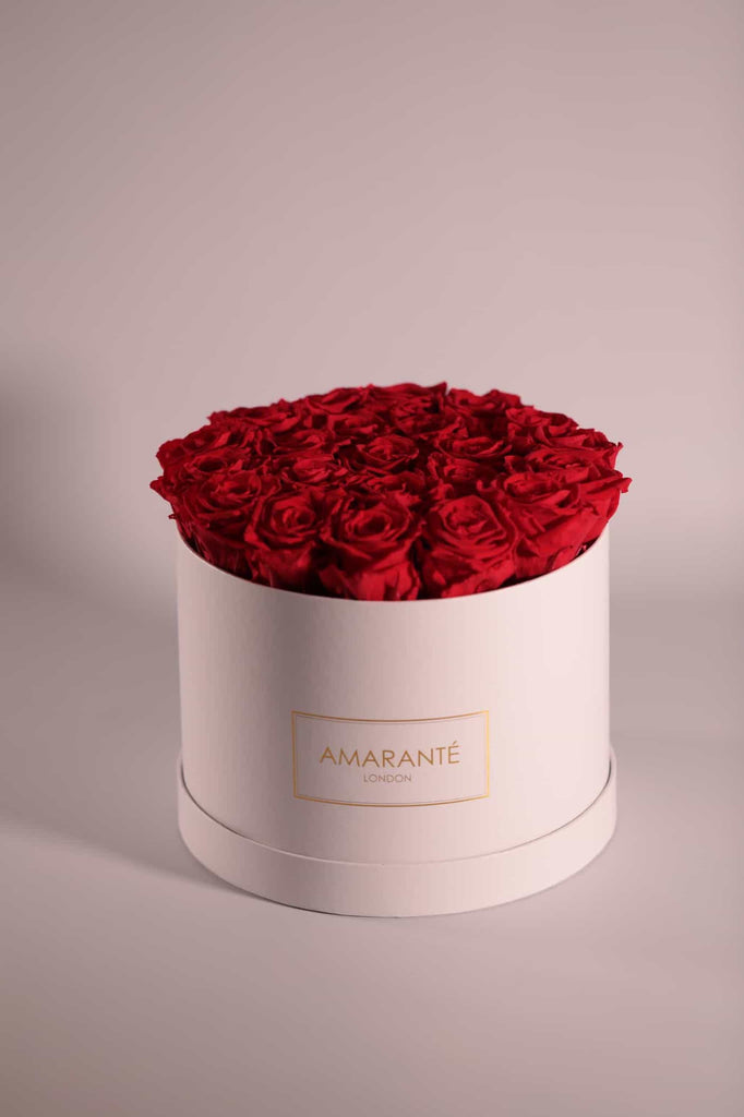 Bright Red Infinity Roses